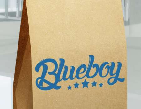 BlueBoy - logodesign | Grafikerik